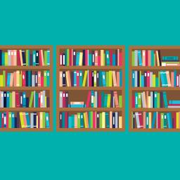 Die NML als elektronische Ressource für Bibliotheken